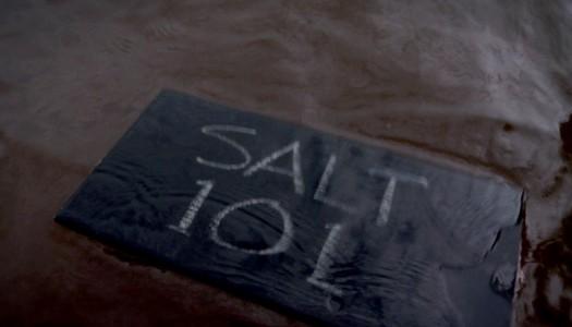 Salt 101