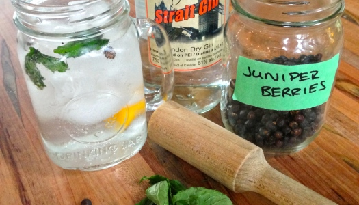 Chazz & Tonic Gin Jar
